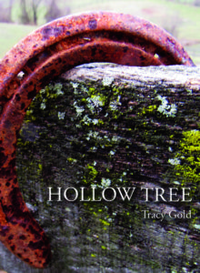Hollow Tree by Tracy Gold