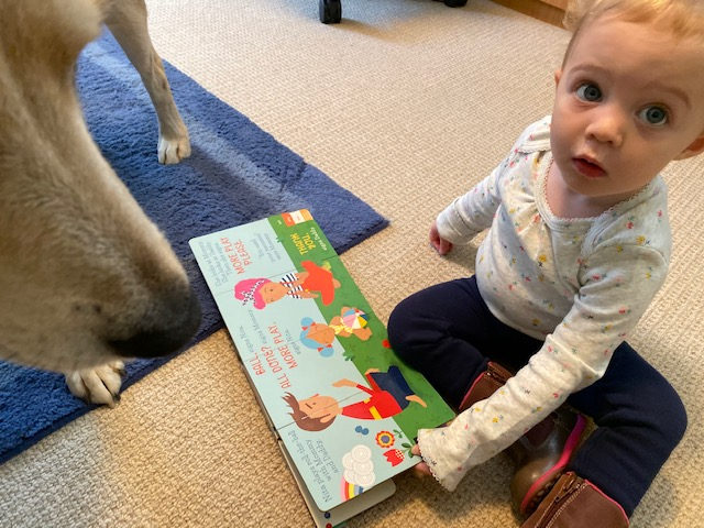 "Baby reads ""Nita's First Signs"""